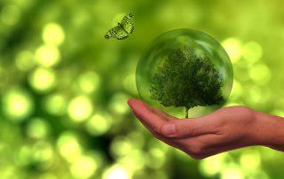 origen de la energía verde