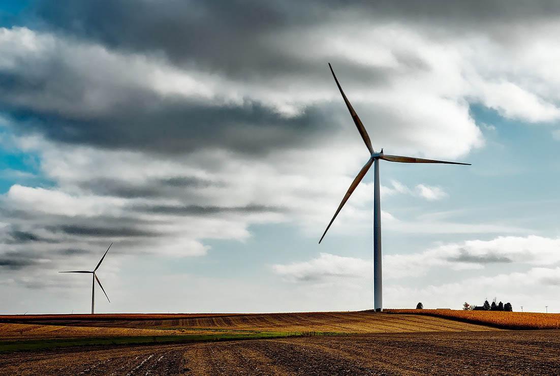 subastas de renovables